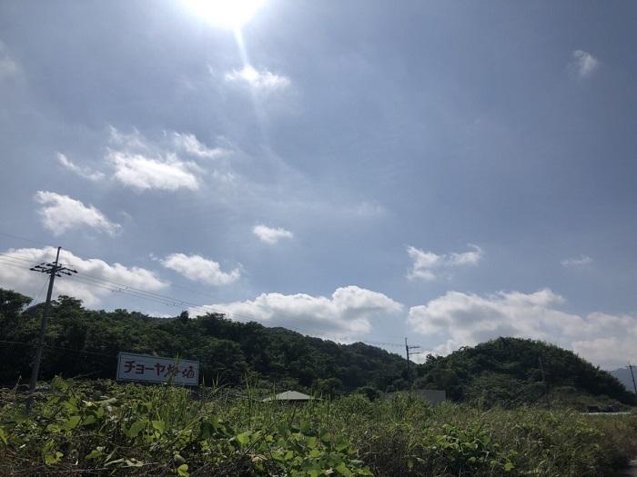 羽曳野市駒ヶ谷のチョーヤの梅酒本社ビル